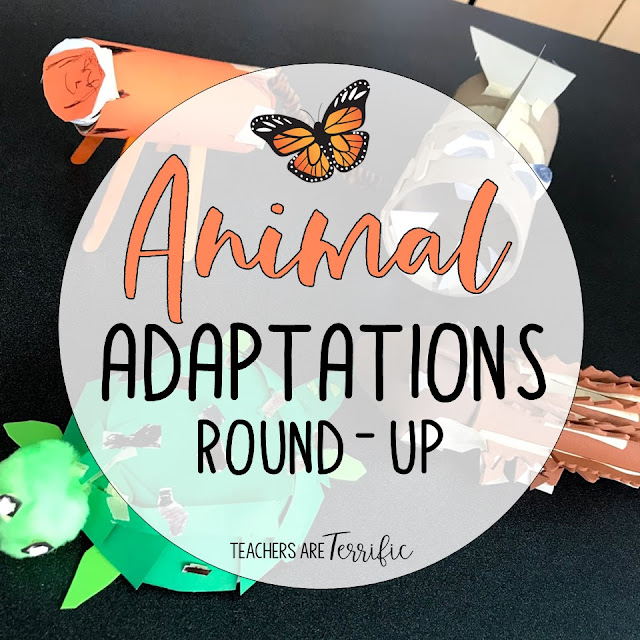 It's all animal adaptations! This post features several resources that will complement your study of animals. The first is an Escape Room and then the STEM challenge inspired by a picture book about animals. You will also see a reading comprehension resource that includes 4 reading passages with questions and a mock-up of a newspaper about animals. There are 3 graphic organizers for the newspaper. Last, create an Animal Adaptation booklet with a study of non-fiction text features! #STEM #animals