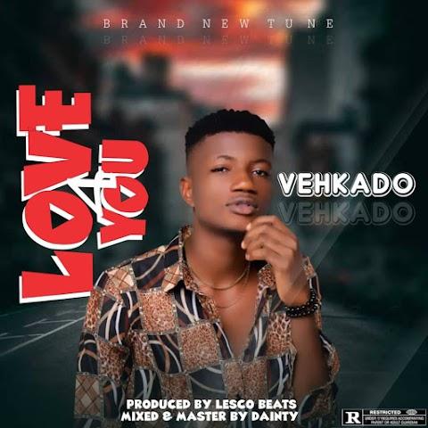 Music: Vehkado - Love 4 You