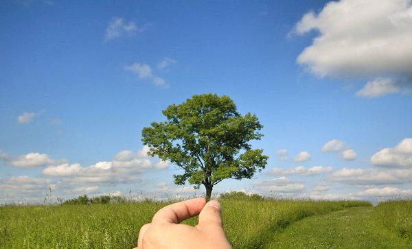 Makalah Lingkungan Hidup Pdf To Doc Buddiesefira