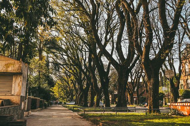Avenida Melían, Belgrano  -    Las 14 calles más lindas de Buenos Aires