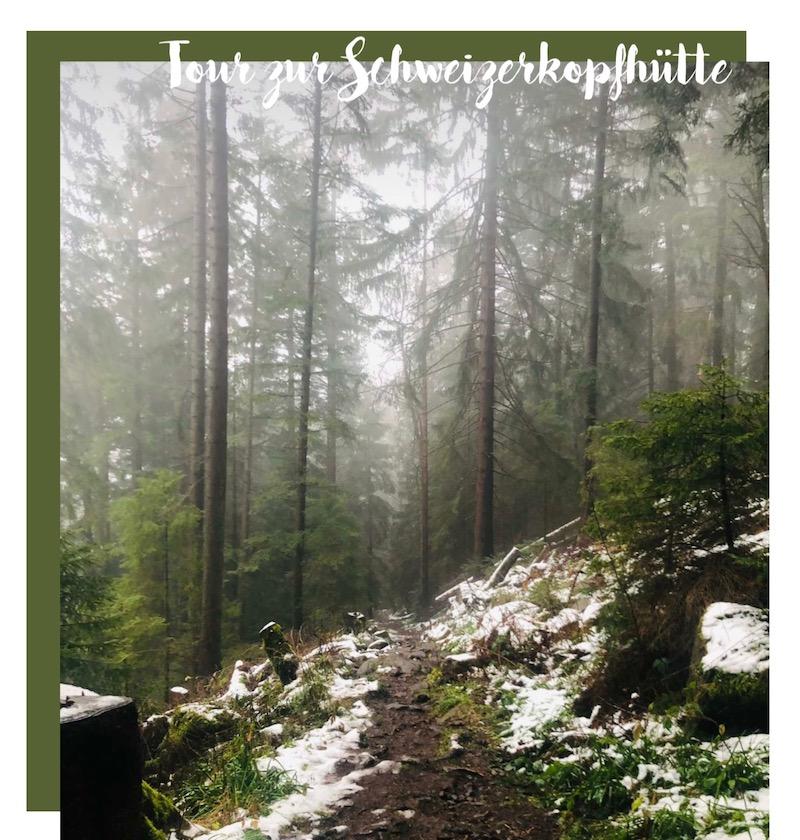 Schöne Winterwanderungen Nordschwarzwald schwäbischen Alb Wandern in Baden-Württemberg - Bad Herrenalb Schweizerkopf