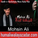 https://www.humaliwalyazadar.com/2018/09/mohsin-ali-nohay-2019.html