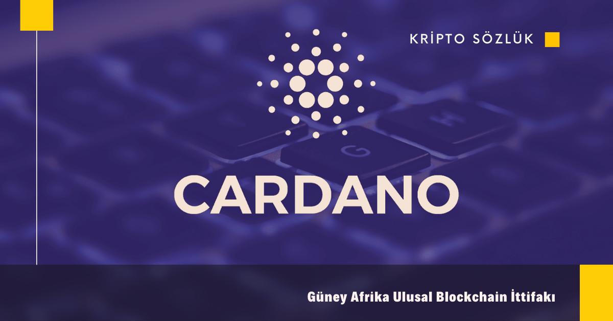 Cardano (ADA)'dan Güney Afrika Ulusal Blockchain Hamlesi!