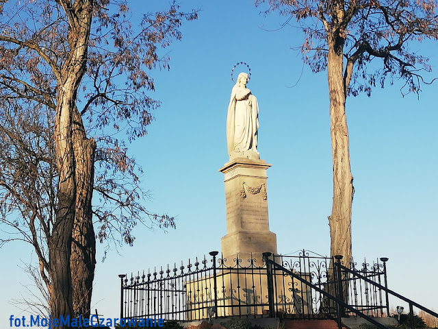 Figura Matki Boskiej Niepokalanej - Wierzbica woj. świętokrzyskie - CZYTAJ DALEJ