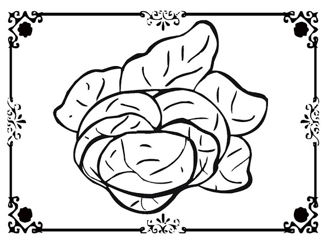 coloring pages of lettuce