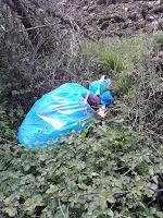 Spazzatura sparsa nel parco lungo il fiume Brembo (Valbrembo)