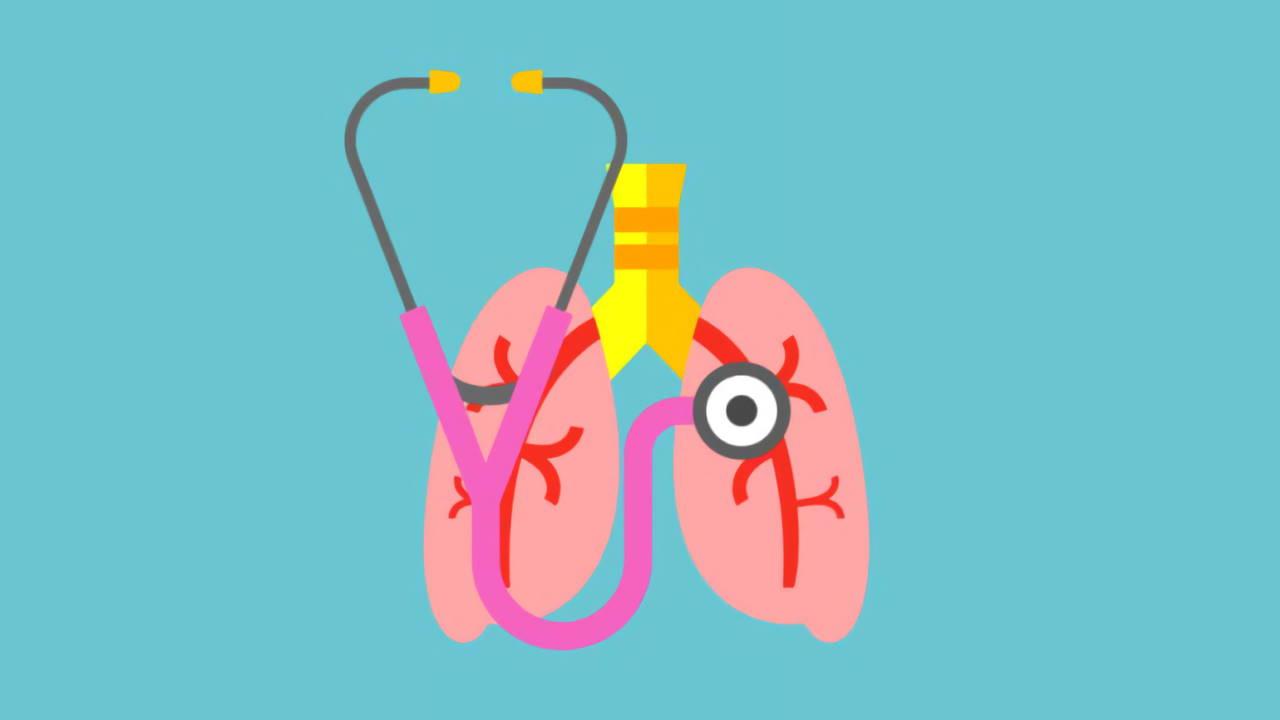 10 Tips Menjaga Kesehatan Organ Pernapasan yang Perlu Anda Coba