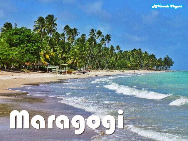 Resultado de imagem para praias do nordeste maragogi