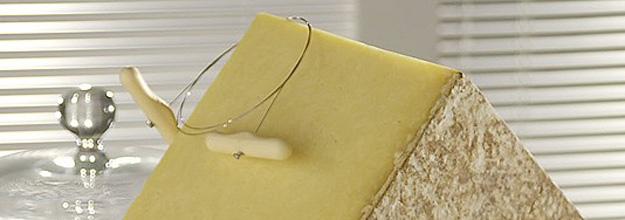 fromage aop laguiole, la laiterie de paris, cahier des charges laguiole, fromage laguiole, blog fromage, blog fromage maison , voyage fromage, tour de france fromage, aubrac, vache aubrac, coopérative jeune montagne, aligot, acheter du laguiole, acheter de l'aligot, terroir aubrac, pierre coulon