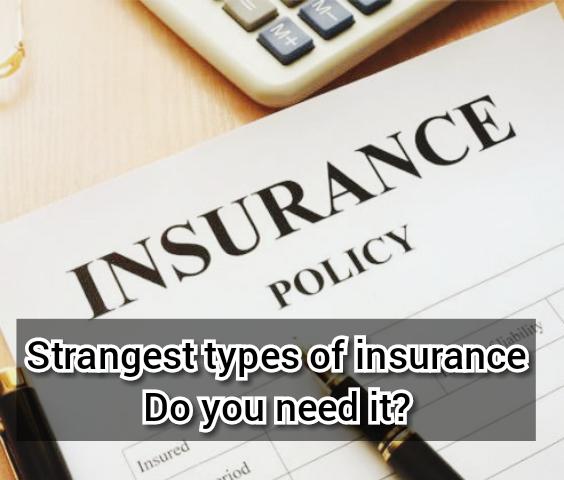 pet insurance embrace