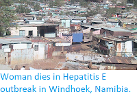 https://sciencythoughts.blogspot.com/2017/12/woman-dies-in-hepatitis-e-outbreak-in.html