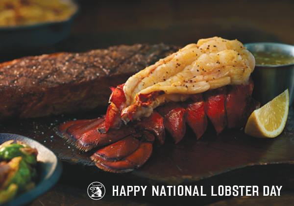 National Lobster Day Wishes Sweet Images