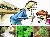 Membuat Ramuan Herbal untuk Atasi Keracunan Makanan (Gastroenteritis) dari Prof. H.M. Hembing Wijayakusuma