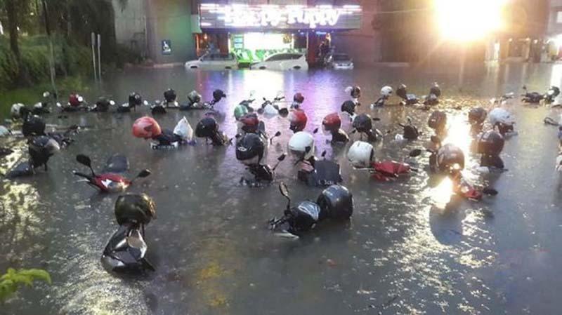 Pemkot Klaim Banjir Surabaya Gara-Gara Dedaunan
