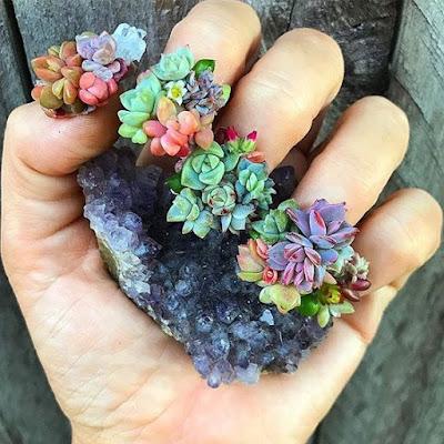 botanical acrylic nail design