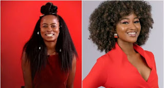 BBNaija 2019: See How Nigerians Voted For Housemates Before The Eviction