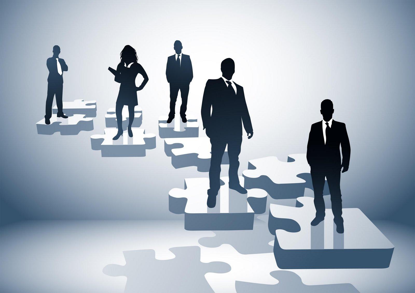 organizational behaviour  leadership in organizations