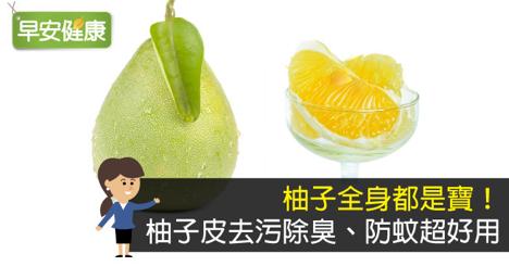 張金發: 柚子全身都是寶! 柚子皮去污除臭、防蚊超好用