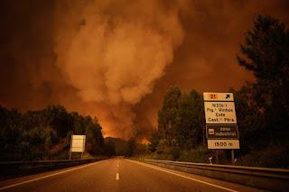 http://m.20minutos.es/noticia/3068121/0/doce-personas-salvan-incendio-portugal-meterse-tanque-agua/