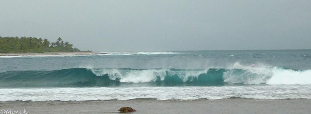saison pluie tahiti