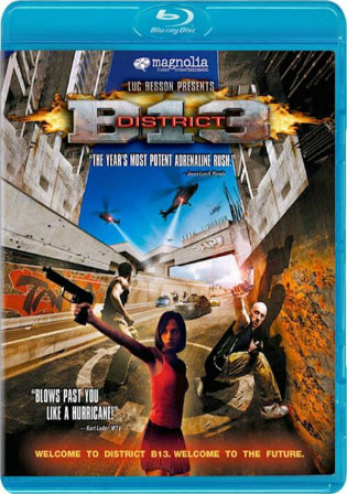 District B13 2004 BluRay 650MB Hindi Dual Audio 720p