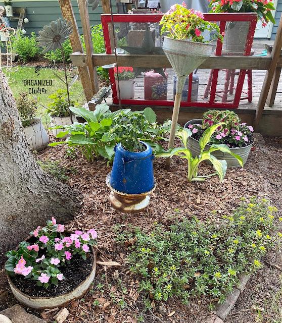 Photo of an under the tree junk garden