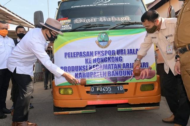 Kebutuhan 360 Ton, Gubernur Jabar Lepas Ekspor 30 Ton Ubi Jalar Bandung ke Hong Kong