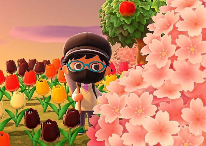 Peaceful Animal Crossing: New Horizons works a treat during these turbulent times, posted on Tuesday, 14 April 2020