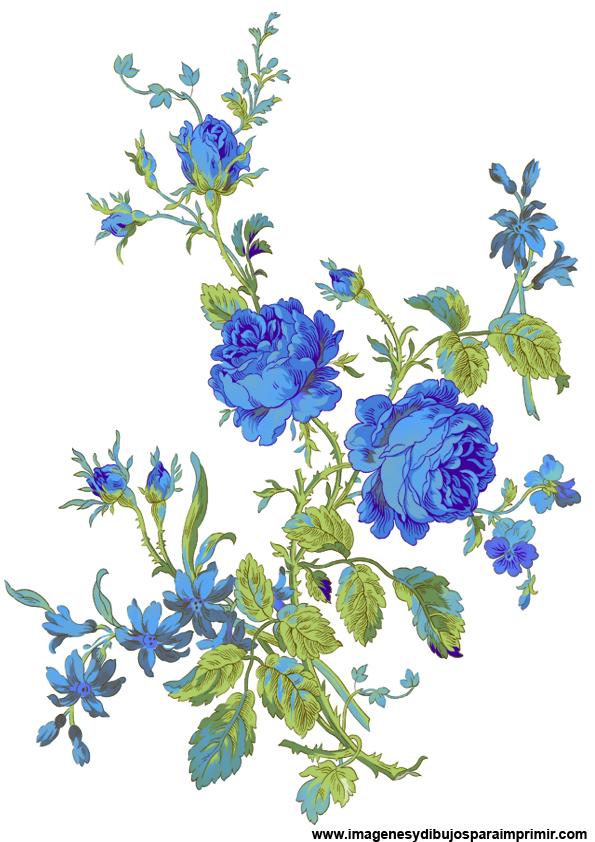 Dibujos De Flores Azules Imagenes Y Dibujos Para Imprimir