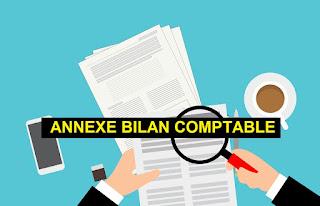 كيفية اعداد ملحق الميزانية annexe de bilan