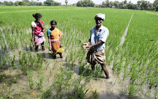 increase-allocation-for-agriculture