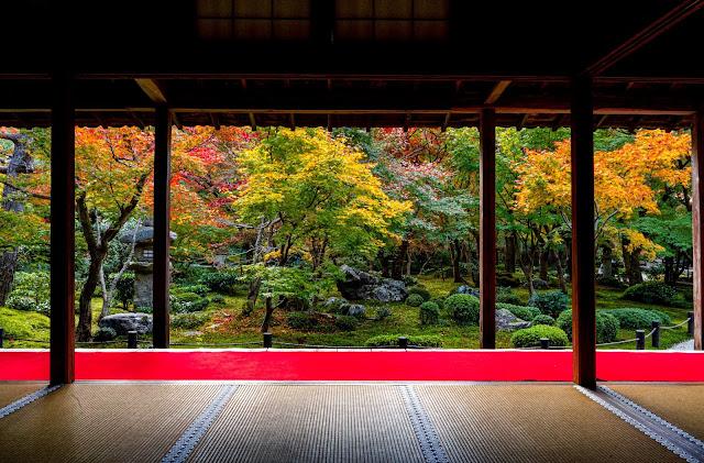 京都,圓光寺,紅葉