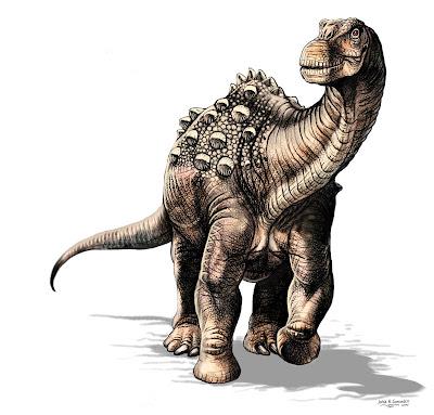 New Species 2020.Species New To Science Paleontology 2020 Yamanasaurus