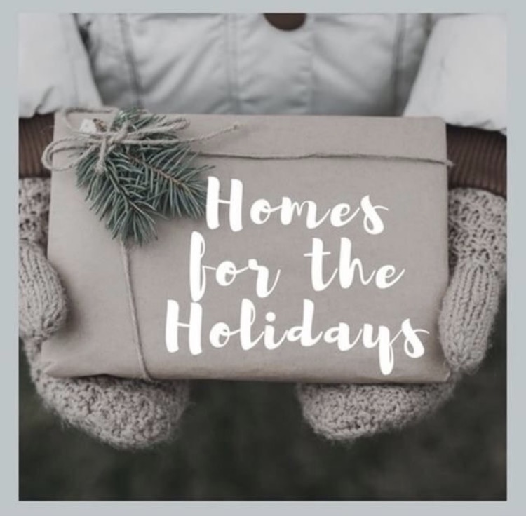 blogger holiday homes
