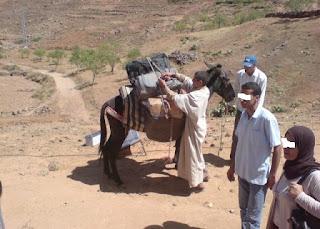 التعيين في القرى المعاناة