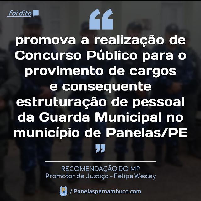 """Foi dito - """"promova a realização de Concurso Público para o provimento de cargos e consequente estruturação de pessoal da Guarda Municipal no município de Panelas/PE"""""""