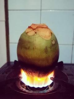 kelapa wulung dibakar untuk mengobati sakit batu empedu dan batu ginjal