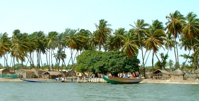 A la découverte des île du Saloum le petit paradis du Sénégal : Tourisme, hôtel, île, pirogue, culture, vacance, sine, saloum, parcs, LEUKSENEGAL, Sénégal, Dakar, Afrique