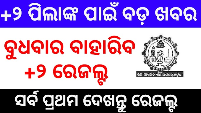 Odisha +2 Results 2020 Check Online On Your Smartphone