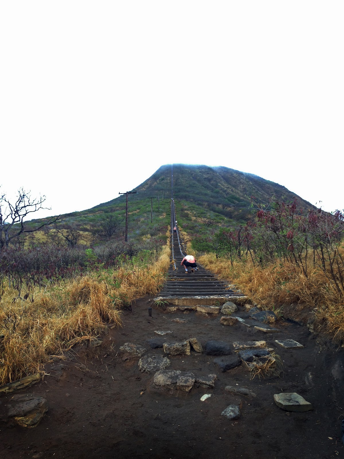 Koko K Dupe: The Contemplative Creative: Koko Crater Railway Trail