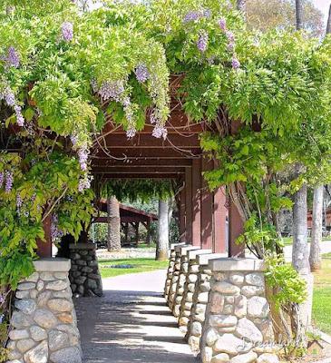 Flowers Garden Arbors
