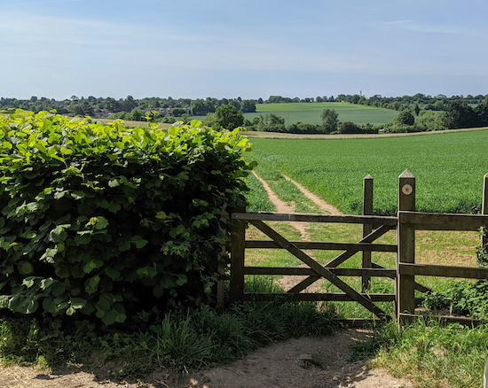 The gate leading to Wheathampstead footpath 59