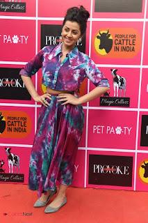 Actress Nikki Galrani Pictures at Provoke Pet Party  0005