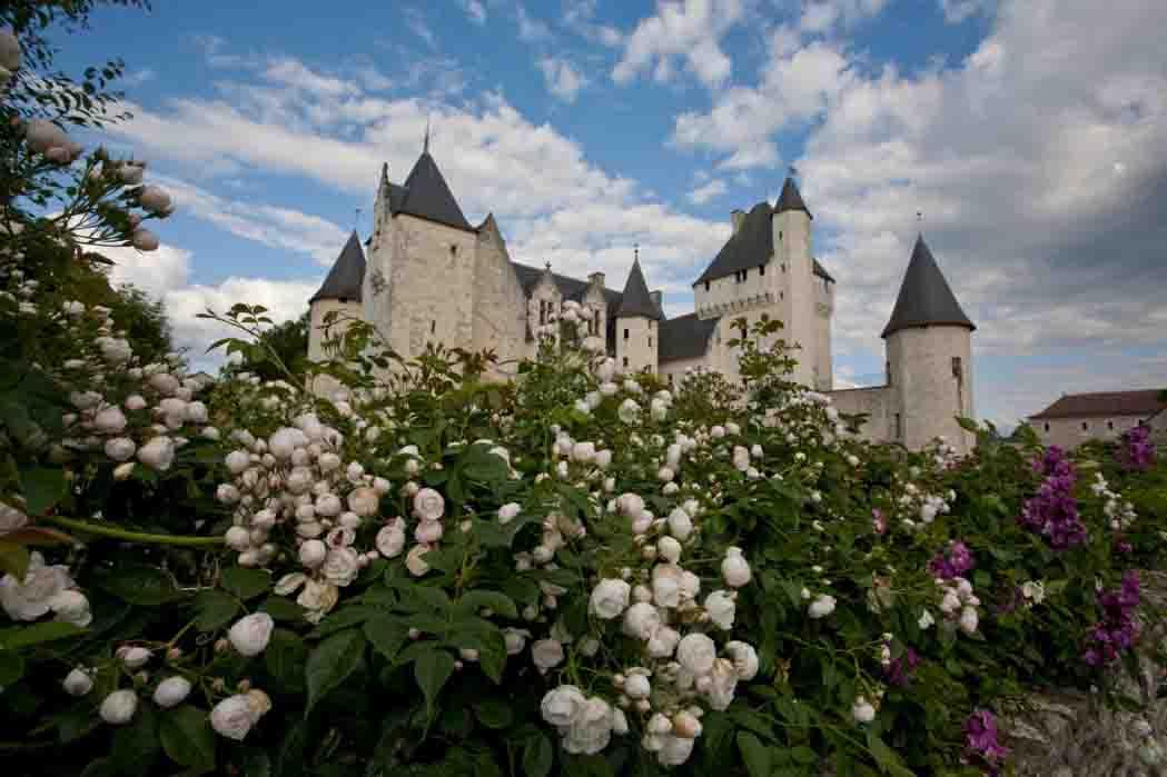 Fiori Gialli Loira.Ilpuntostampa News Al Castello Di Rivau Valle Della Loira Francia