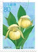 Selo Orquídea Cypripedium