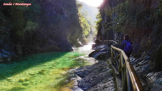 Aguas cristalinas, río Borosa, Pontones, Sierra de Cazorla, Jaén, Andalucía