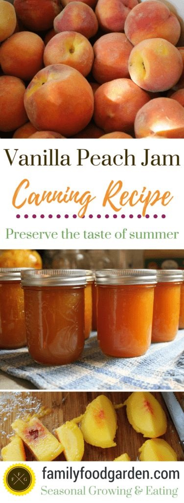 Canning Vanilla Peach Jam Recipe