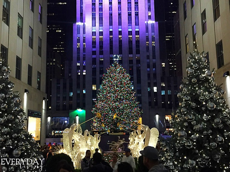 Take me away december recap calypso in the country for Traveling to new york in december