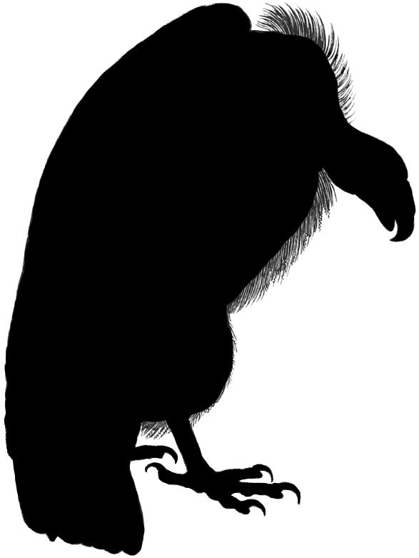 telecanters receding rules silhouettes xxxv