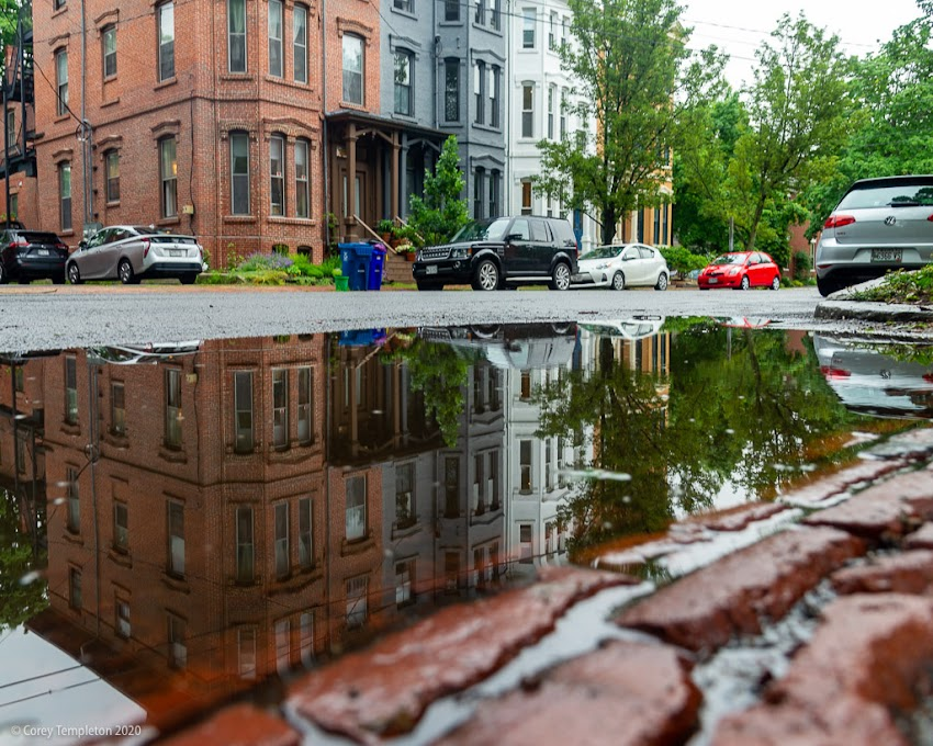 Portland, Maine USA June 2020 photo by Corey Templeton. A well-placed puddle after a deluge of rain yesterday. On Carroll Street.